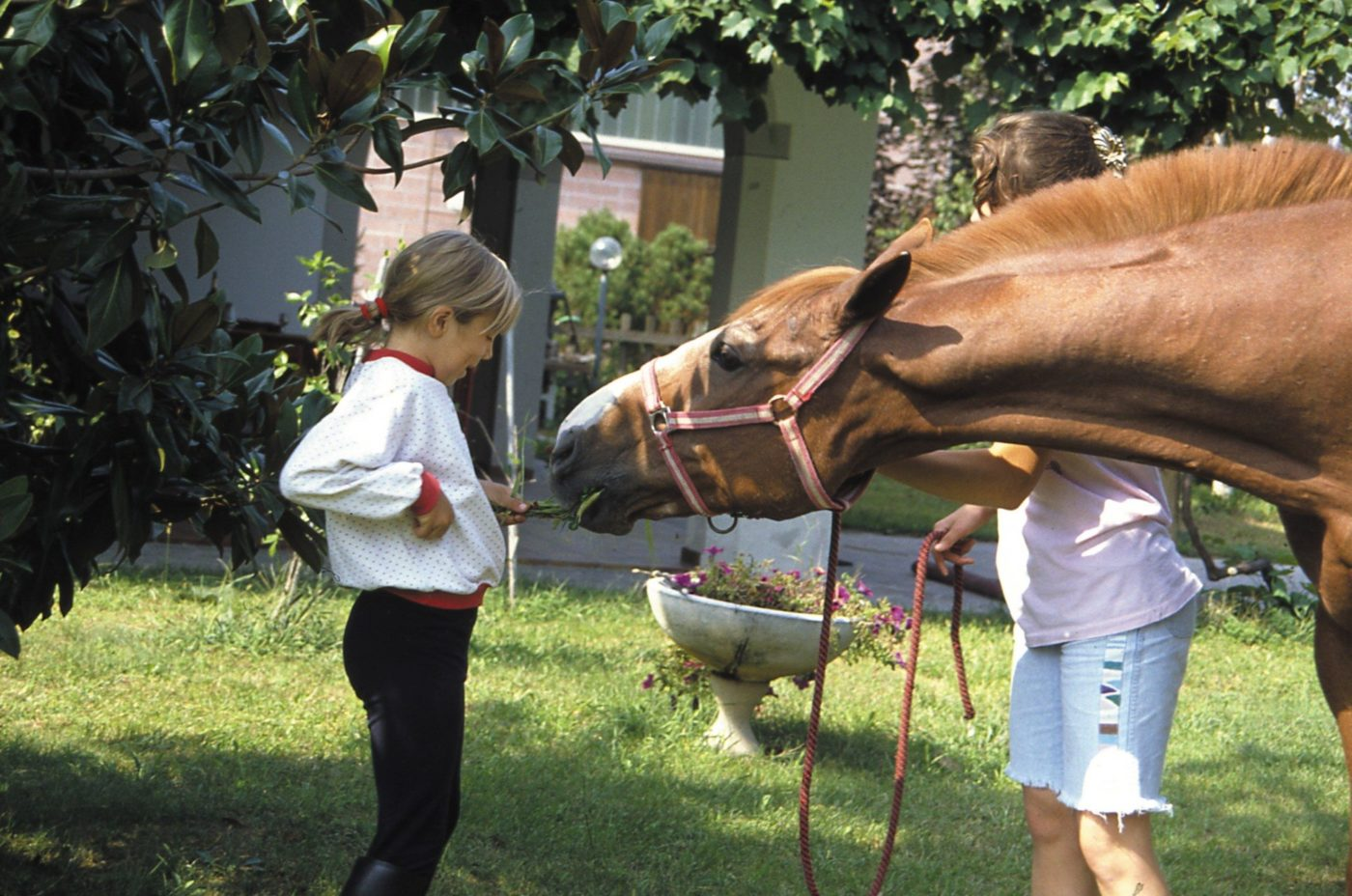 single parent farm holiday at the Gelindo dei Magredi