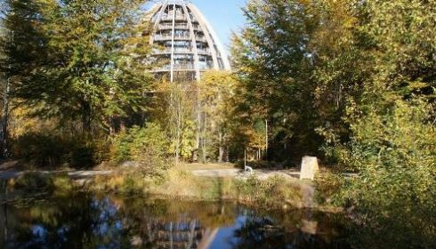 Famous treetop walk in the Bavarian Forest