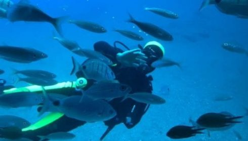 submarine safari in Lanzarote, beach holiday in Lanzarote, excursions in Lanzarote