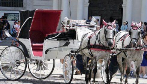 horse drawn carriage, Vienna
