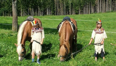 single parent farm holiday in Austria - native American day
