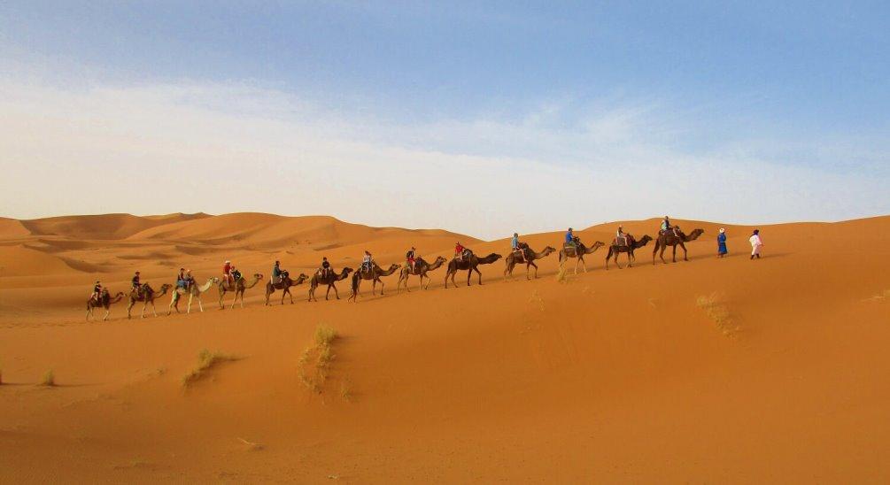 desert tour in Morocco - camel ride