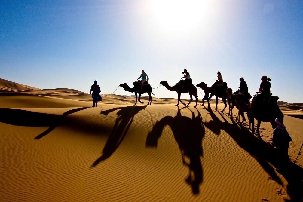 Sahara Desert Tour: Camel Caravan