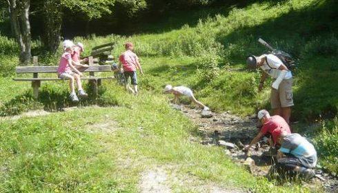 dad and children hiking by stream near Alpendorf