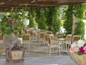 Single Parents on Holiday - Halkidiki Hotel Image 2