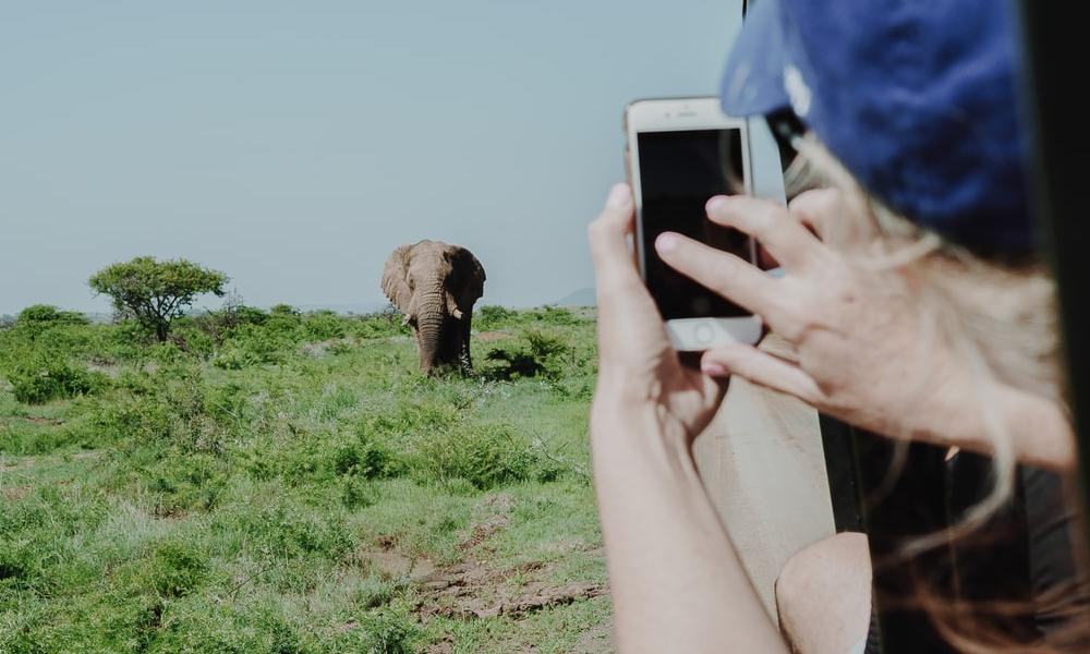 African safari with kids -taking photos on phone