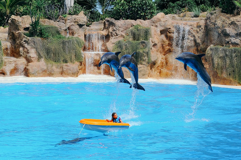 holidays with kids - waterpark Tenerife