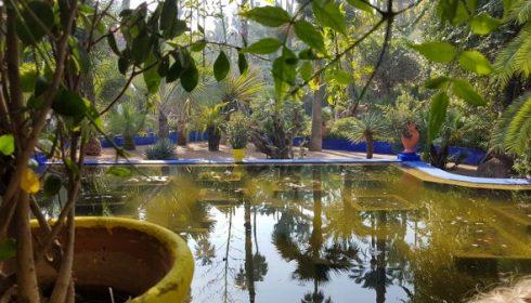 Yes Saint Laurent Majorelle Gardens - Marrakech