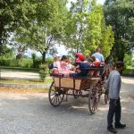 horse drawn carriage ride in Italy