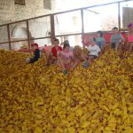 children playing in corn pile
