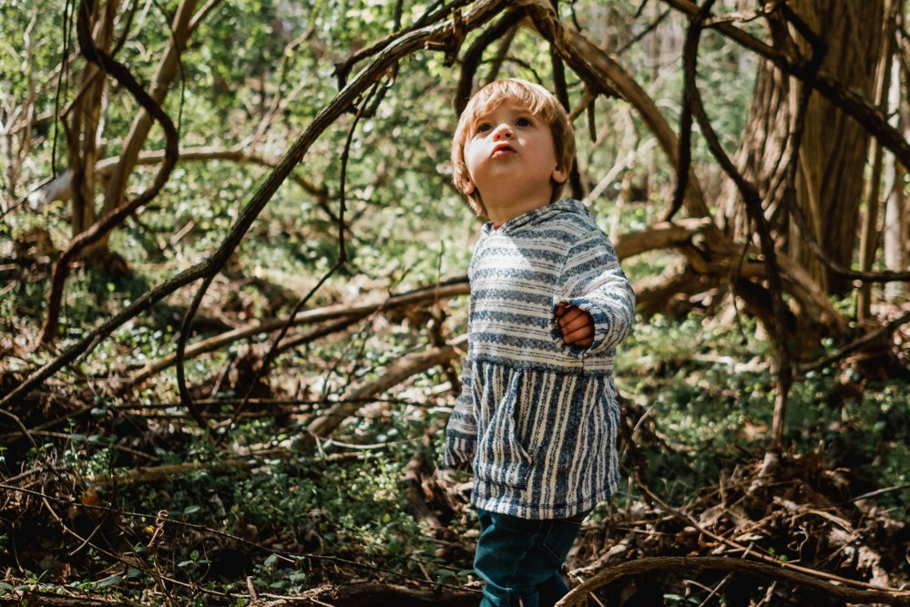 small child playing in woods on family camping trip