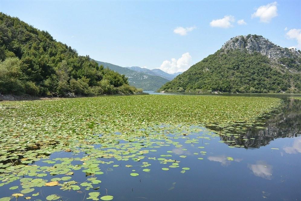 Skadar Lake National Park in Montenegro