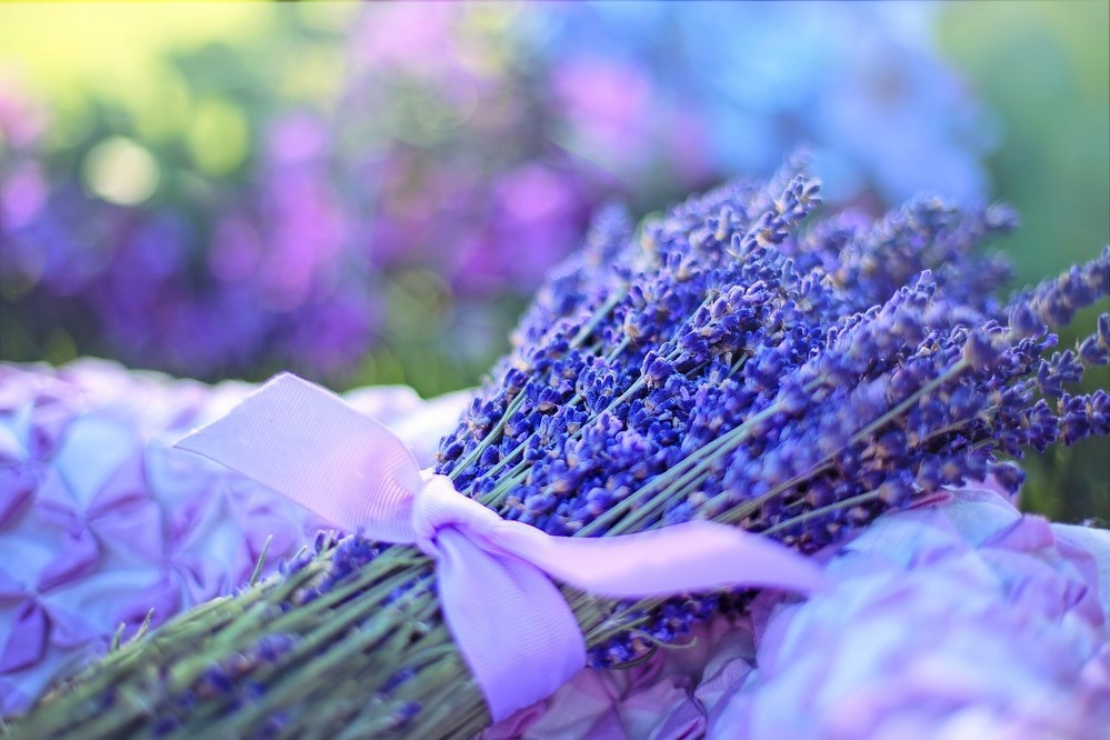 lavender to keep you calm